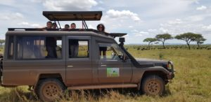 Wildebeest Migration Safaris In Tanzania
